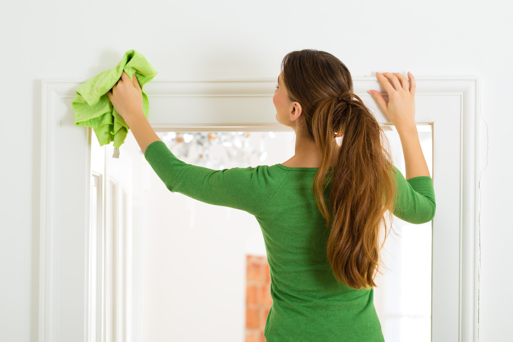 Alexandria Home Cleaning - Home Cleaners in Alexandria VA